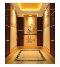 樂至重慶電梯